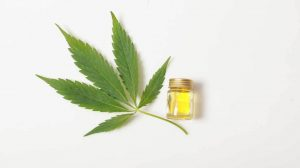 The-Health-Benefits-of-CBD-Oil.jpg